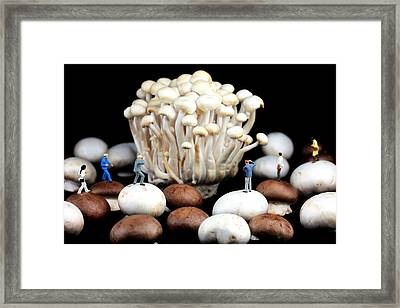 Nature Photographers Shooting Adventure Framed Print by Paul Ge