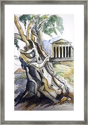 Nature's Embrace Framed Print by Therese Alcorn