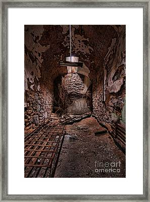 Nature's Reclamation Framed Print by Andrew Paranavitana