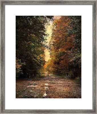 Nature's Secret Framed Print by Jai Johnson