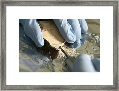Neanderthal Dna Extraction Framed Print by Volker Steger