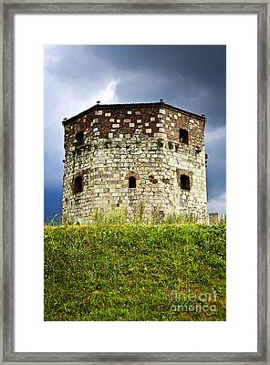 Nebojsa Tower In Belgrade Framed Print by Elena Elisseeva