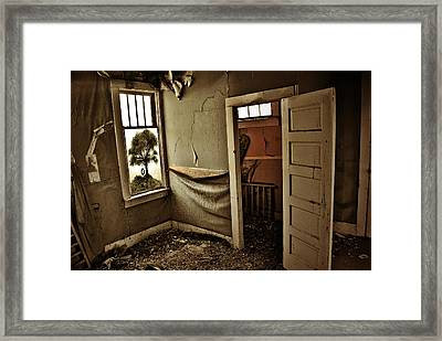 Nelly Olsens Tree Framed Print by JC Photography and Art