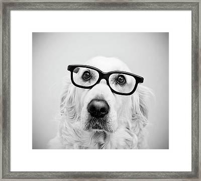 Nerd Dog Framed Print by Thomas Hole