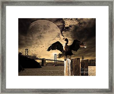 Night Of The Cormorant Framed Print by Wingsdomain Art and Photography
