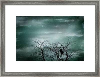 Night Owl Framed Print by Georgia Fowler