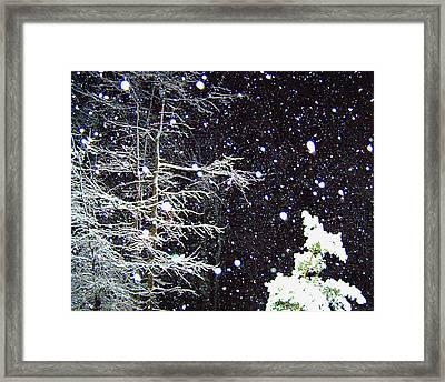 Night Snow Framed Print by Sandi OReilly