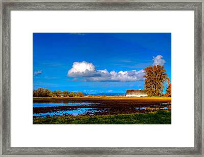 Nisqually Wildlife Refuge P35 Framed Print by David Patterson