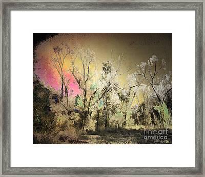 No. 10 Peyote Place Framed Print by Arne Hansen