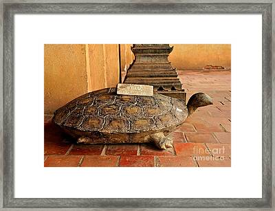 No Sitting Framed Print by Dean Harte