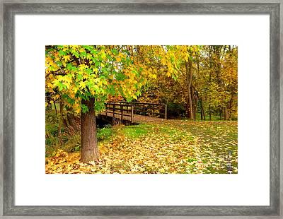 Nov.12-13 Framed Print by Shasta Eone