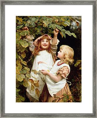Nutting Framed Print by Frederick Morgan