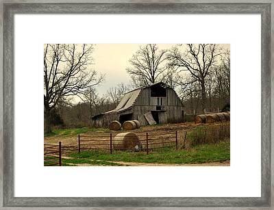 Oak Barn Framed Print by Marty Koch
