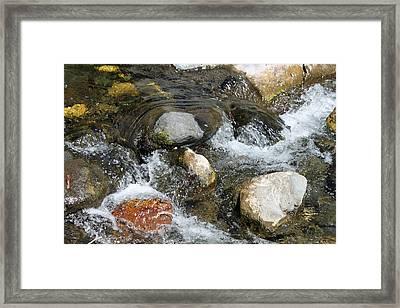 Oak Creek Framed Print by Lauri Novak