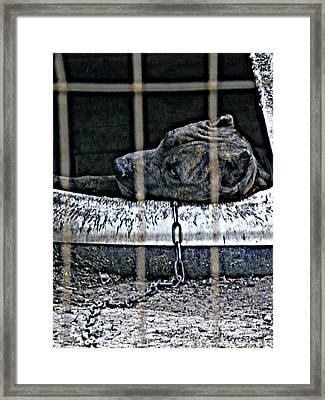 Off Duty Framed Print by Joe Jake Pratt