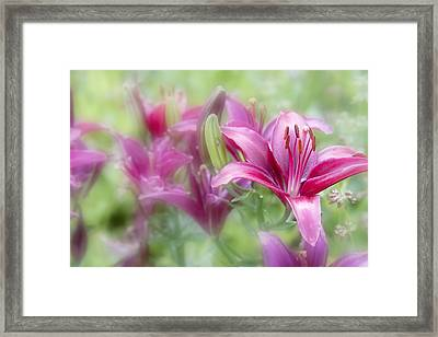 Oh So Pink Framed Print by Toni Hopper
