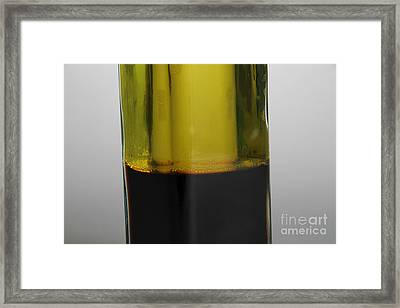 Oil And Vinegar Framed Print by Photo Researchers