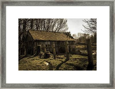 Old Fashioned Shed Framed Print by Dawn OConnor