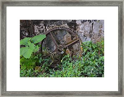 Old Gear Framed Print by Carol  Bradley