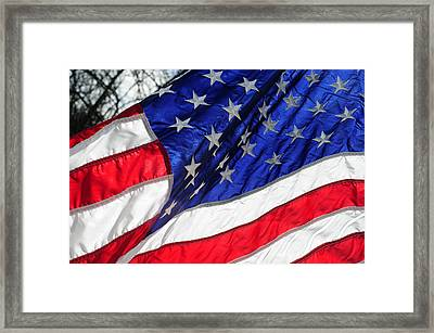 Old Glory Still Waves Framed Print by Wanda Brandon