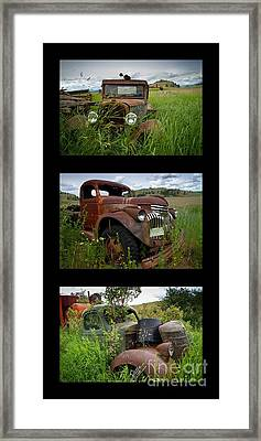 Old Guys 7 Framed Print by Idaho Scenic Images Linda Lantzy