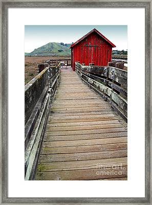Old Red Shack At The End Of The Walkway Framed Print by Wingsdomain Art and Photography