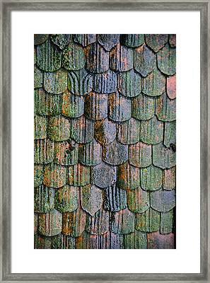 Old Roof Tiles Framed Print by Jen Morrison