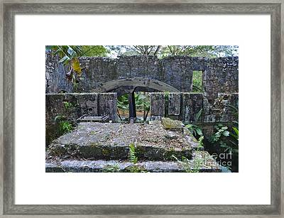 Old Sugar Mill Water Wheel Ruins Framed Print by Carol  Bradley