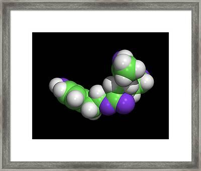 Oleocanthal Olive Oil Molecule Framed Print by Dr Tim Evans
