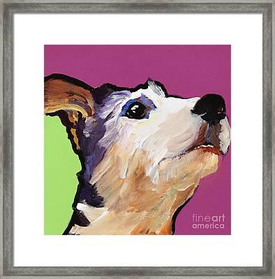 Ollie Framed Print by Pat Saunders-White