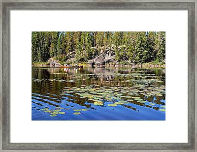 On A Lily Pond - 1 Framed Print by Larry Ricker