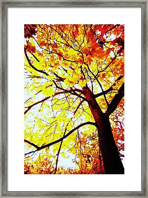 On Fire Framed Print by Todd Sherlock