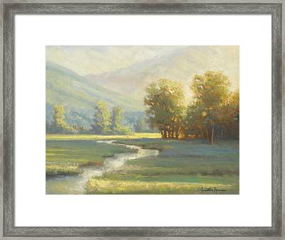 On The Edge Of Delight Framed Print by Jonathan Howe