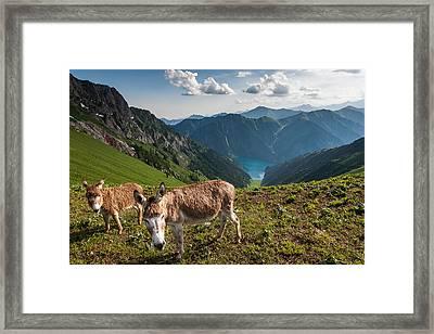 On The Pass Framed Print by Konstantin Dikovsky