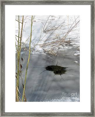 On The River. Heart In Ice 02 Framed Print by Ausra Huntington nee Paulauskaite