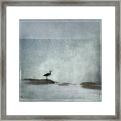 On The Rocks Framed Print by Linde Townsend