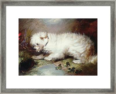 On The Watch Framed Print by George Armfield