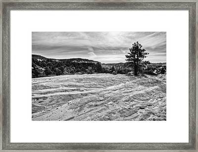 On The Way To Subway Framed Print by Chad Dutson