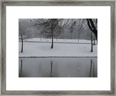 On This Winter Day Framed Print by Shawn Hughes