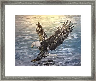 On Wings Of Eagles Framed Print by Cecilia Putter