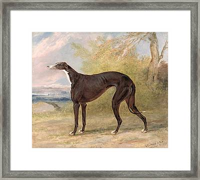 One Of George Lane Fox's Winning  Framed Print by George Garrard