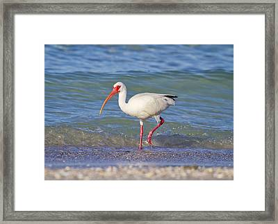 One Step At A Time Framed Print by Betsy Knapp