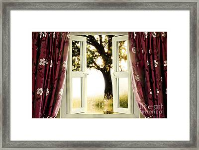 Open Window To Tree Framed Print by Simon Bratt Photography LRPS