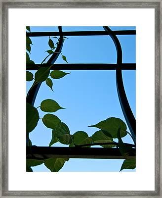 Opportunity Framed Print by Travis Crockart