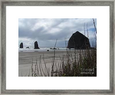 Oregon Coast Framed Print by Randy Edwards