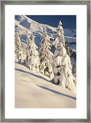 Oregon, United States Of America Snow Framed Print by Craig Tuttle