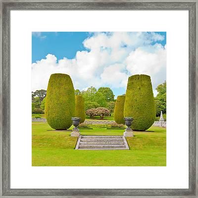 Ornamental Garden Framed Print by Tom Gowanlock