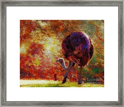 Ostrich II Framed Print by Arne Hansen