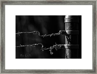 Other Side Of The Fence Framed Print by Bob Orsillo