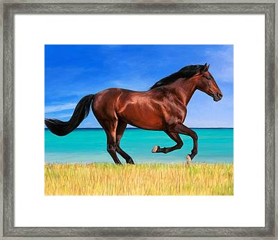 Out And About Framed Print by Snake Jagger